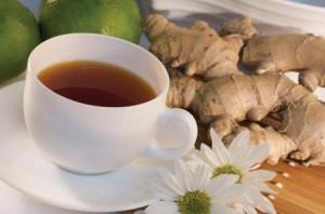 Le gingembre antioxydant naturel puissant